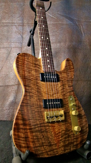 Custom Built Built Guitar
